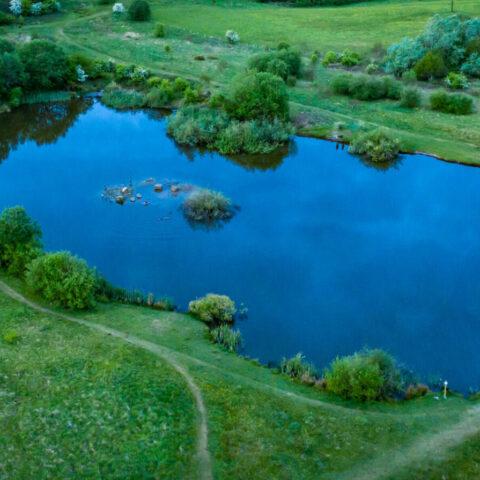 Four Ponds